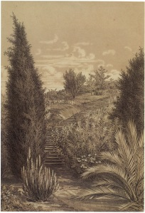 The Station Plenty, (Yallambie) view VIII by Edward La Trobe Bateman 1853-1856. Cypress and steps.