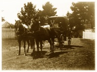 Horse carriage in the farm yard at Yallambie, (Bill Bush Collection).