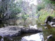 Plenty River at Yallambie, January, 2015