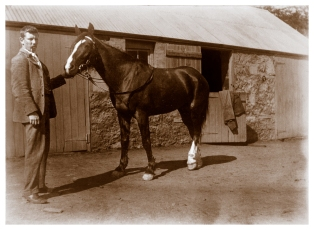 Probably Will Wragge outside the old Bakewell era stables, c1900, (Bill Bush Collection).