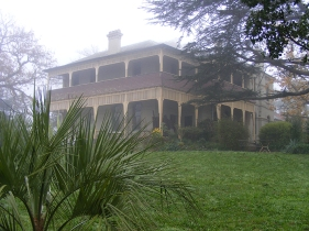 Misty morning at Yallambie, June, 2008.